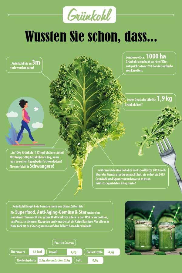 Infografik_Gruenkohl