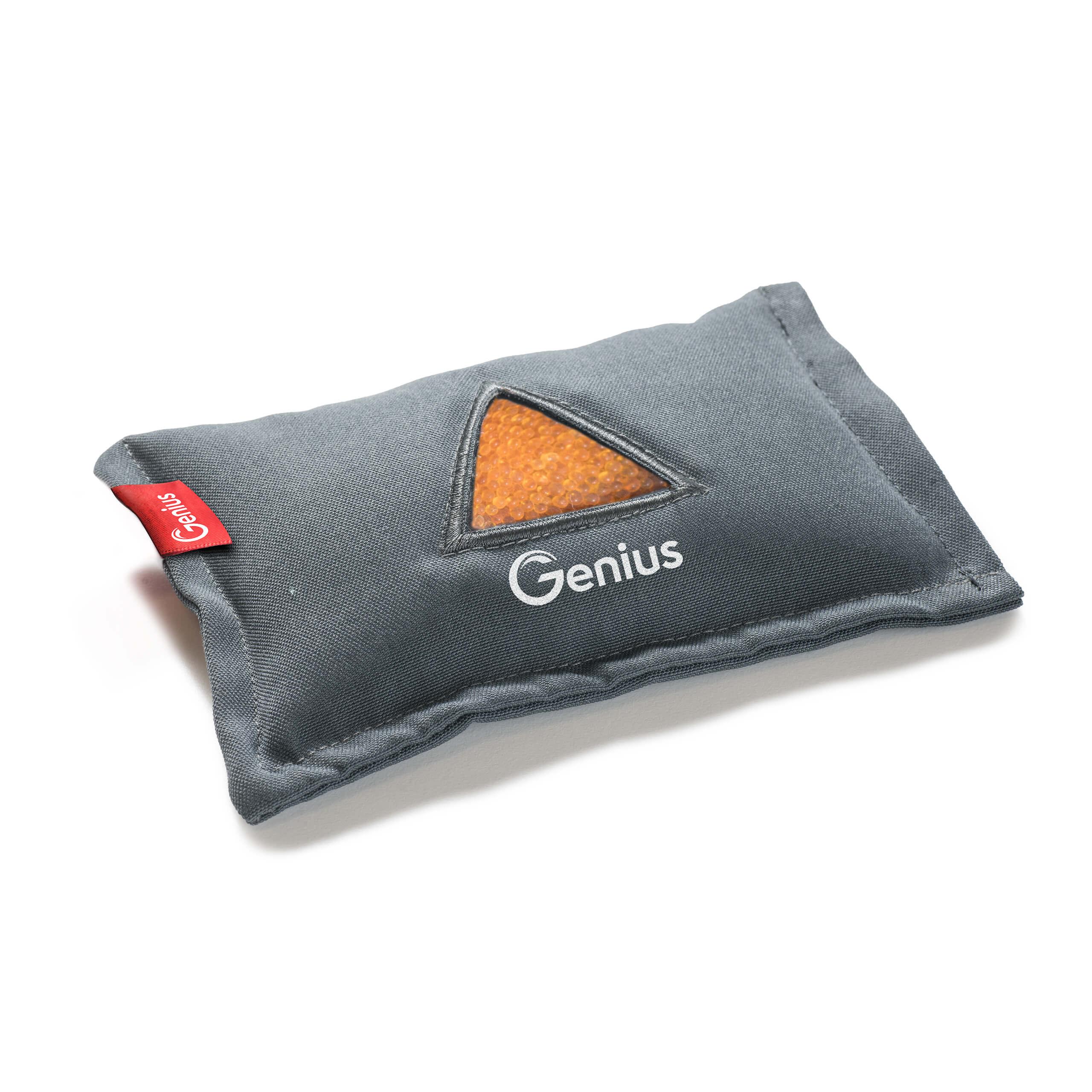 Genius CleanCut   Auto-Entfeuchtungskissen A14343
